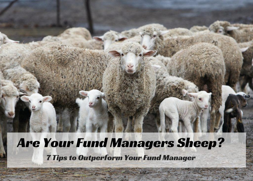 career risk fund manager